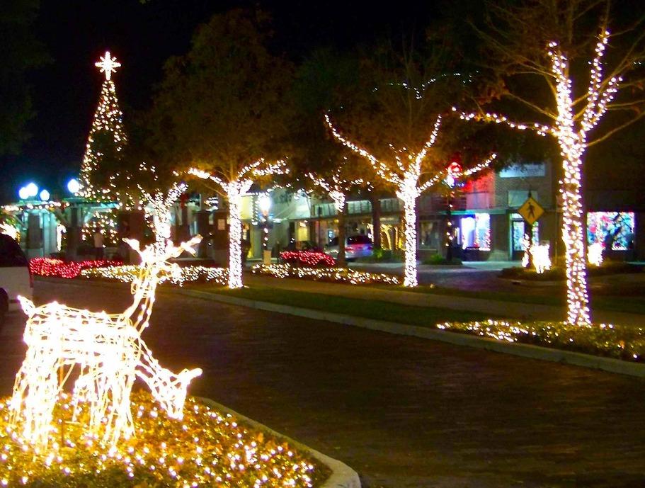31st Annual Light Up Winter Garden